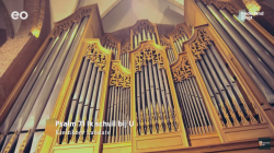 Psalm 71: Ik schuil bij U - Nederland Zingt